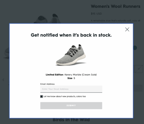 Allbirds-Out-of-Stock-Notifications